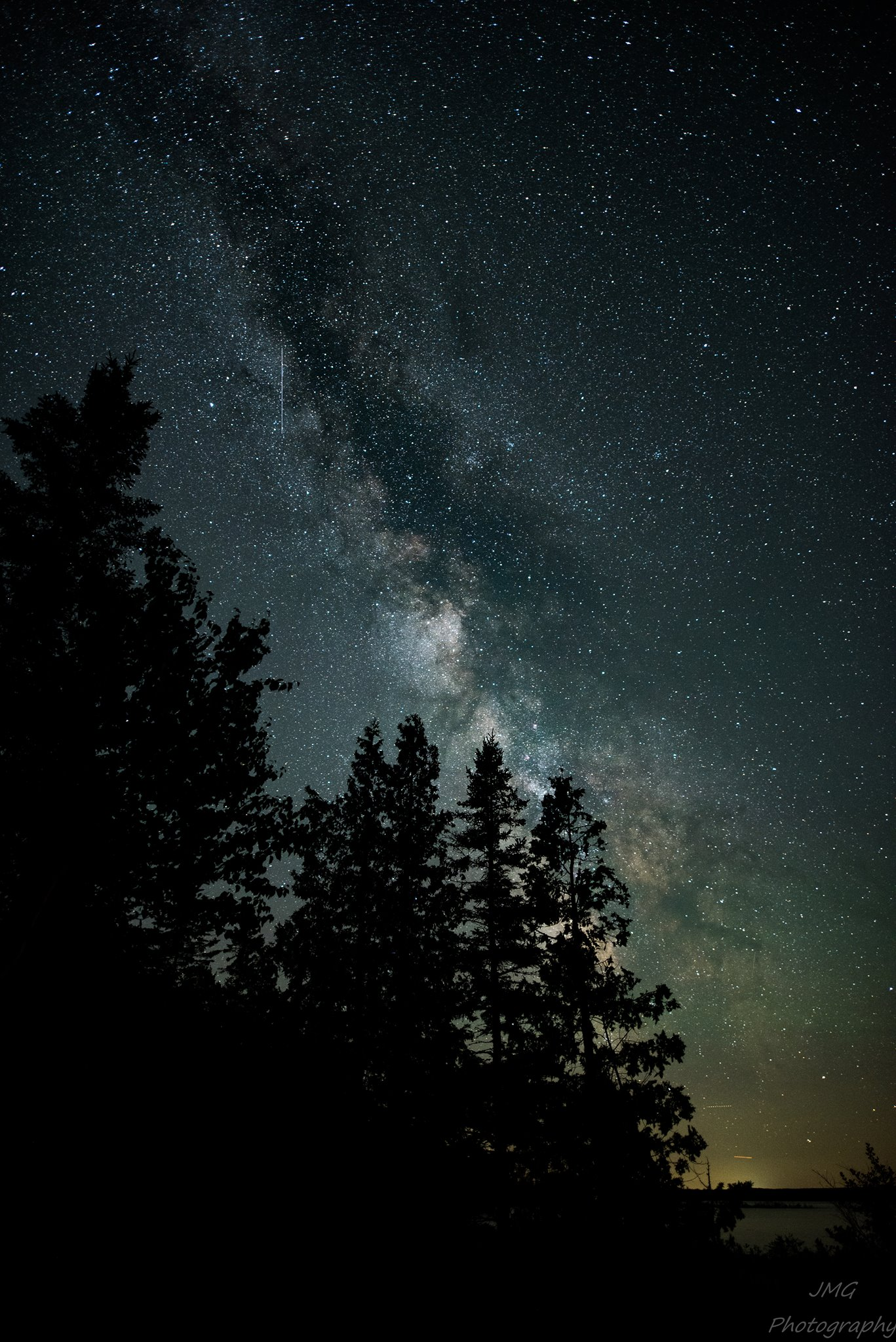 Joe Garza Milky Way trees