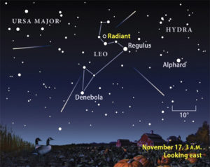 The radiant of the Leonid Meteor Shower is in the sickle of the Lion